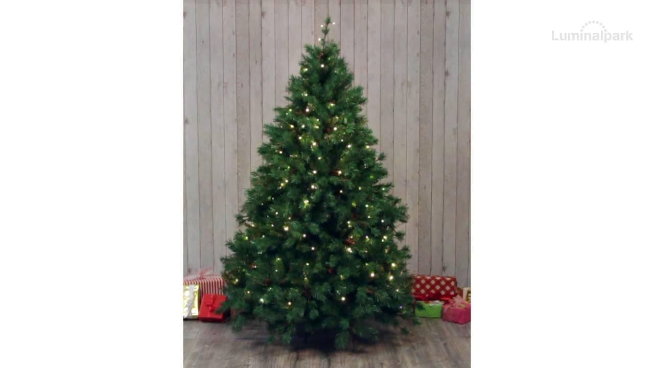 Luci albero di natale verdi