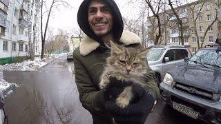 Катя держалась до последнего. Спасти котят. Заруба с Нариманом