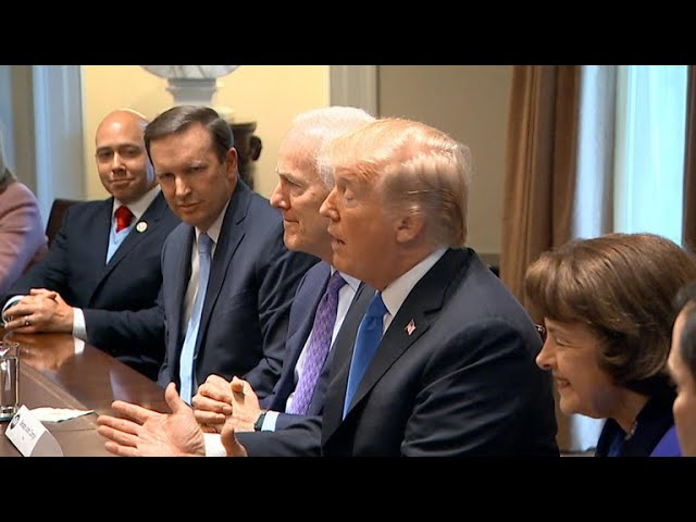 Trump clashes with Republicans in gun control meeting