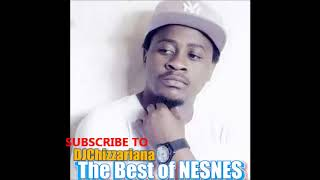 The Best of NESNES - DJChizzariana