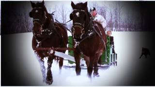 Christmas Day Horse-Drawn Sleigh Ride!