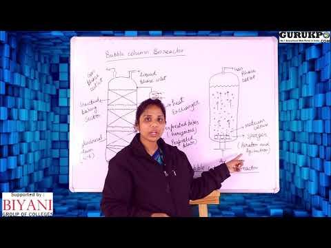 What Is A Bubble Column Reactor?(B.Sc, M.Sc)
