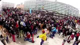 Pampas Nationaldag Harlem Shake
