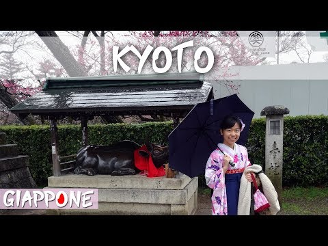 GIAPPONE: GUIDA A KYOTO / JAPAN: KYOTO GUIDE | Travel Duo