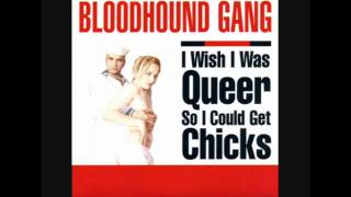 Bloodhound Gang - I Wish I Was Queer So I Could Get Chicks (Punk Rock Edit Version)