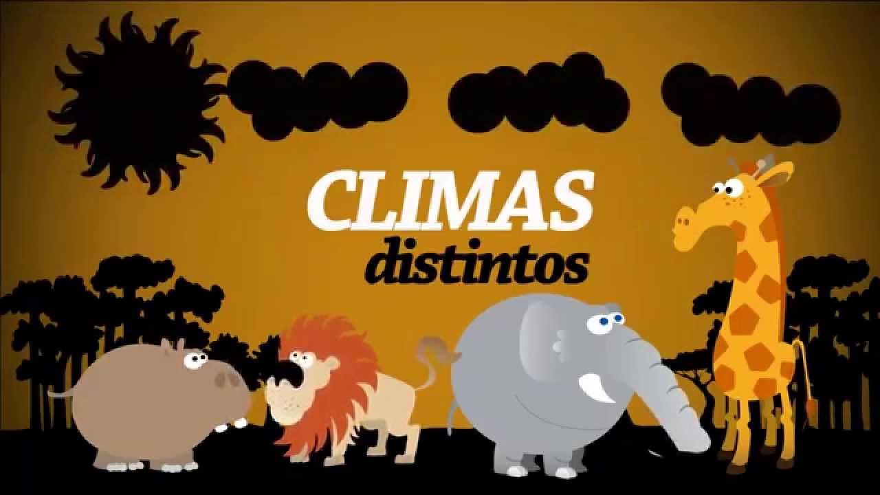 animales exoticos  YouTube