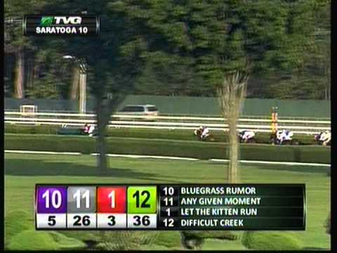 Picture Book - 2012 Saratoga Maiden Claiming Race - Third Place Finish