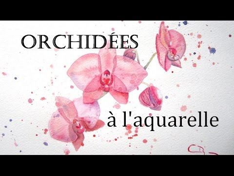 comment peindre une orchid e aquarelle youtube. Black Bedroom Furniture Sets. Home Design Ideas