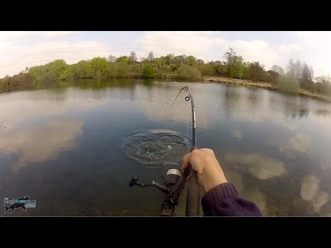 Clear Water Pike Fishing Action!