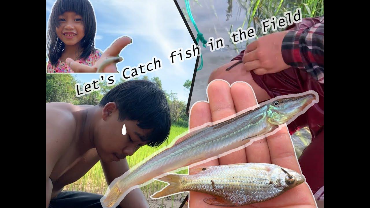 fun cathing fish