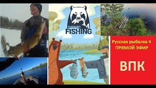 Русская рыбалка 4 Рыбалка на донки и спиннинг РР4 Рыбалка на карася СТРИМ Прямой эфир ВПК
