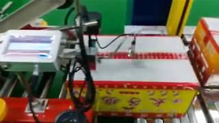 Inkjet Date Printer for Carton Box. Online Automatic Batch Coding Printing Machine.
