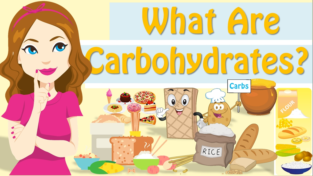what are carbohydrates ? what is carbohydrates? - youtube, Human Body