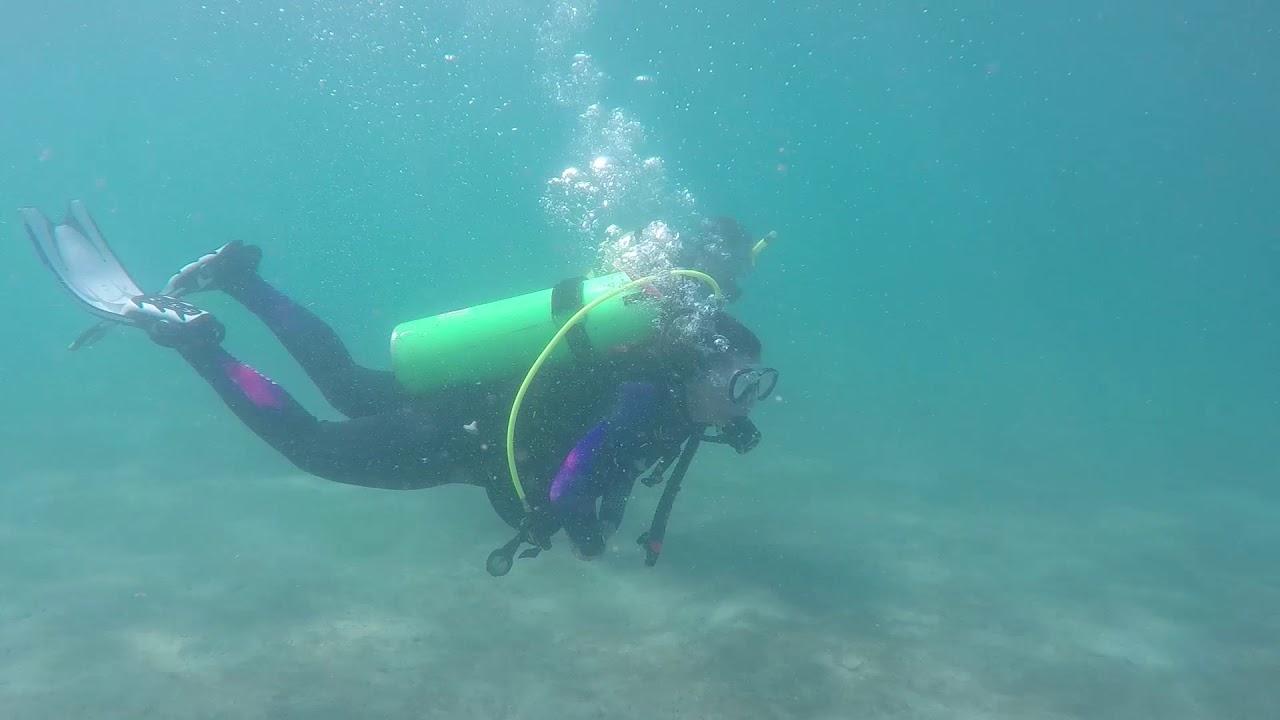 Best Scuba Diving Wetsuit Reviews | Joe's Scuba Shack