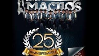 BANDA MACHOS 2015  usted