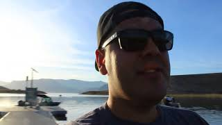 Lake mead tilapia and bass fishing