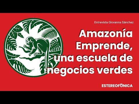 Amazonía Emprende, una escuela de reforestación y negocios verdes | Estereofonica