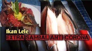 Lele Fish Extra sambal Anti Virus Coronna level Up
