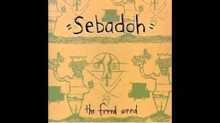 Watch Sebadoh Take My Hand video