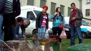 Wiosenne Targi Ogrodnicze w Słupsku - 5.04.2014