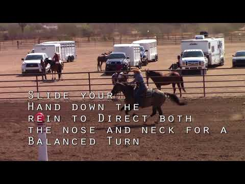 Mounted Shooting Training with Kenda Lenseigne