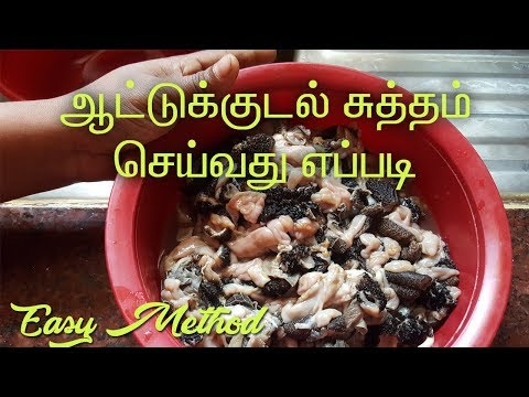 Kudal Sutham Seivathu Eppadi   How to clean boti   ஆட்டுக்குடல் சுத்தம் செய்வது எப்படி