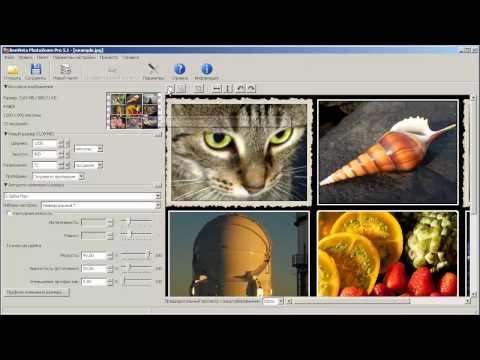 Photozoom pro видеоурок