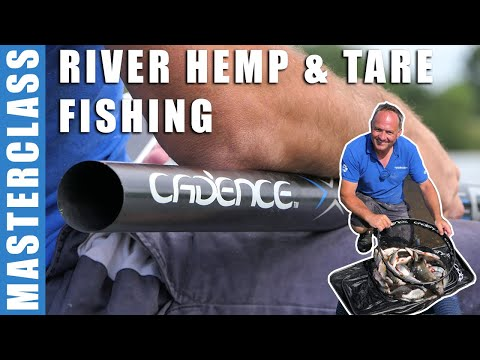 Hemp And Tare Fishing For Roach On The River Trent