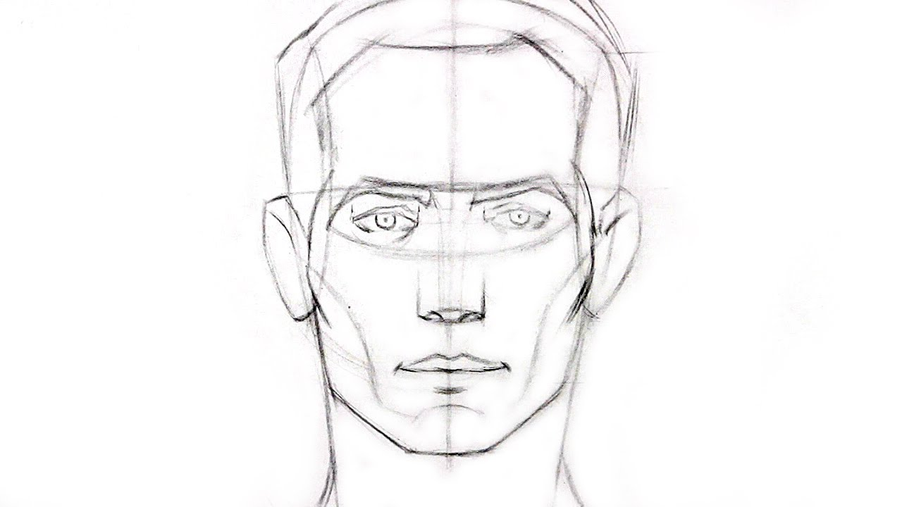 How to draw the head front view youtube