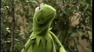 """The Muppet Show: Kermit - """"Bein' Green"""""""