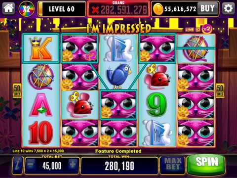 MISS KITTY GOLD Video Slot Casino Game with a FREE SPIN BONUS