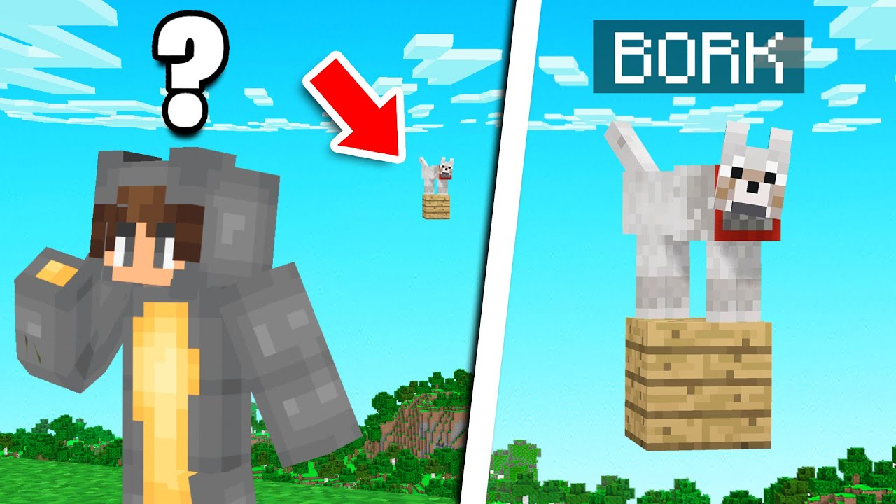 Someone STOLE My PET BORK In Minecraft! (Bee Town)