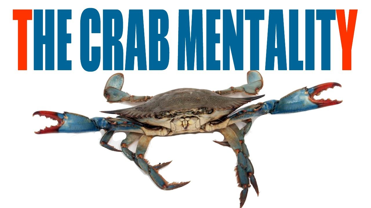 the black crab in a barrel mentality crabmentality youtube