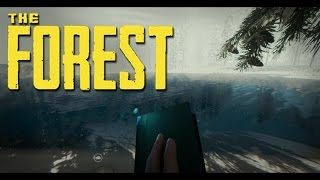 The Forest: красивый картинка | WISE GAME