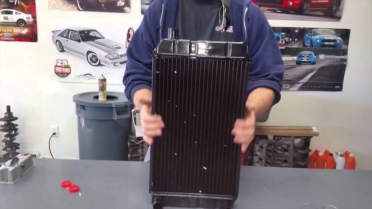 Topic 1500 mg midget radiator certainly