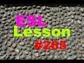 Frame from ESL Vocabulary Lesson 265 - Plaster, Slide, Cobbled