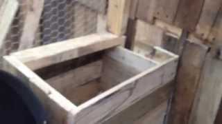 Chicken Coop Made From Pallet Lumber.