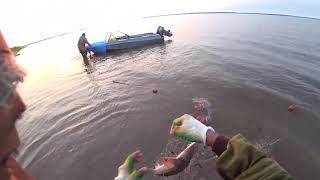 Чир продолжение трудовой рыбалки Якутия Yakutia