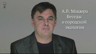 """А.В. Мацюра """"Беседы о городской экологии"""""""