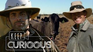 Dans la peau d'un COWBOY de l'Outback ❘ Mustering ❘ AUSTRALIE ❘ Keep Curioous ❘ Mini Doc