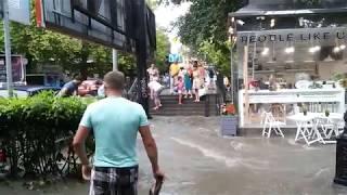 видео Наш адрес - Крым! Канна садовая, выставка НБС.