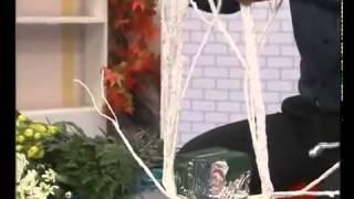 Video day cắm hoa đơn giản - Tự làm giỏ hoa tặng thầy cô 20.11 - ORCHIDSWORLD.VN