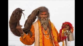 साधुओं का चमत्कारी आयुर्वेदिक नुस्ख़ा..........लटजीरा चिड़चिरया ,    AYURVEDA JADI BUTI GYAN