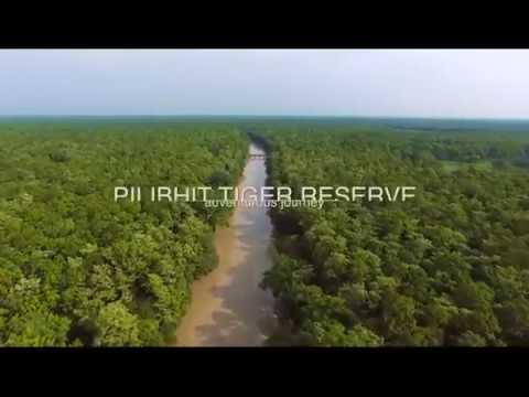 """Pilibhit Tiger Reserve"" Jungle Blog-01"