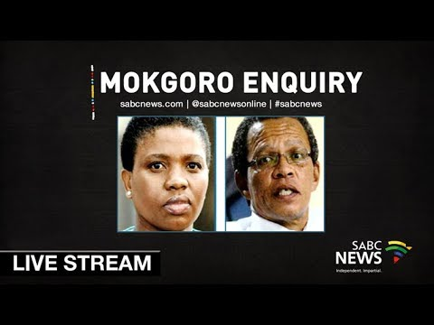 Justice Mokgoro Enquiry: Lawrence Mrwebi, 21 February 2019 Part 2