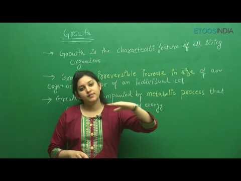 Plant Growth and Development I Shivani Bhargava (SB) Mam From ETOOSINDIA.COM