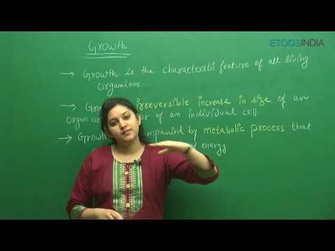 Plant Growth and Development I Shivani Bhargava (SB) Mam From ETOOSINDIA.COM
