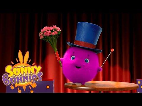 SUNNY BUNNIES | サニーマジシャン | 子供のための面白い漫画 | WildBrain
