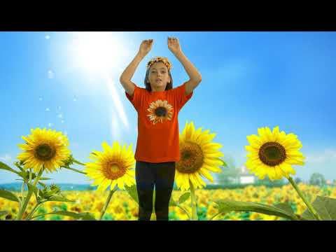 I Am A Little Sunflower | Flower Rhymes For Kids | Action Song for Kids | Time 4 Kids TV
