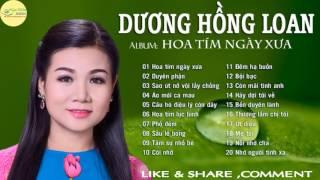 DUYÊN PHẬN HOA TÍM NGƯỜI XƯA -Dương Hồng Loan 2017, Nhạc Trữ Tình  Hay Nhất - Thần Tượng Bolero 2017